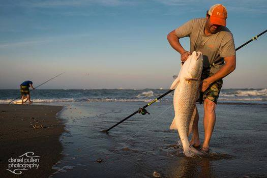 Red Drum on Cape Point, Buxton, NC. Rod was built on SV1305-2 blank.